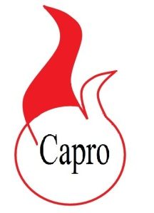 logo (re)